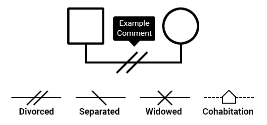 Genogram comment symbols.
